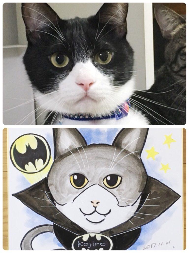 ハチワレ小次郎のバットマンコスプレ
